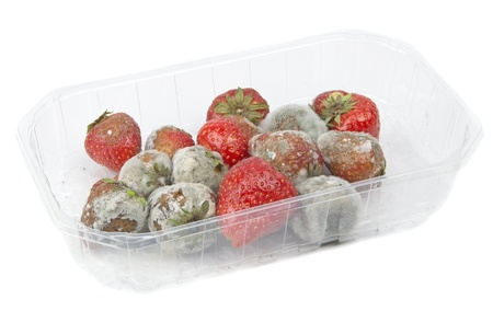 16801262 - a packet of rotten mouldy strawberries on a table top